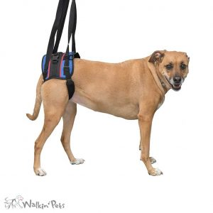 Walkin' Lift Combo Harness – Rear