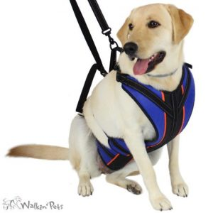 Walkin' Lift-n-Step Harness