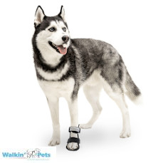 Walkin' Bootie Splint