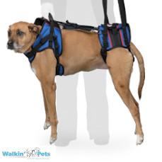 Walkin' Lift Combo Harness – Front & Rear