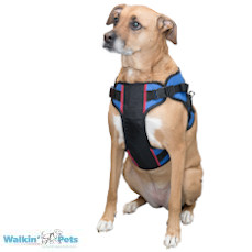 Walkin' Lift Combo Harness – Front