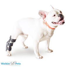 Walkin' Hock Splint