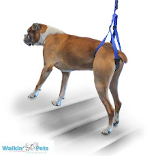 Walkin' Up-n-Go Leash