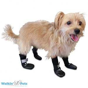 Dog Boots and Pet Booties from Walkin' Wheels